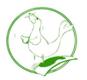 CNSN Logo